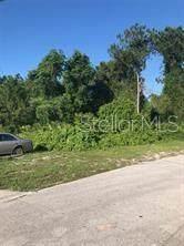 Address Not Published, Deltona, FL 32738 (MLS #V4912252) :: Premium Properties Real Estate Services
