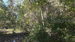 2010 Prescott Boulevard, Deltona, FL 32738 (MLS #V4912645) :: Premium Properties Real Estate Services