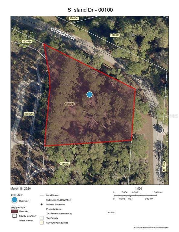 S Island Drive, Paisley, FL 32767 (MLS #V4912761) :: Griffin Group