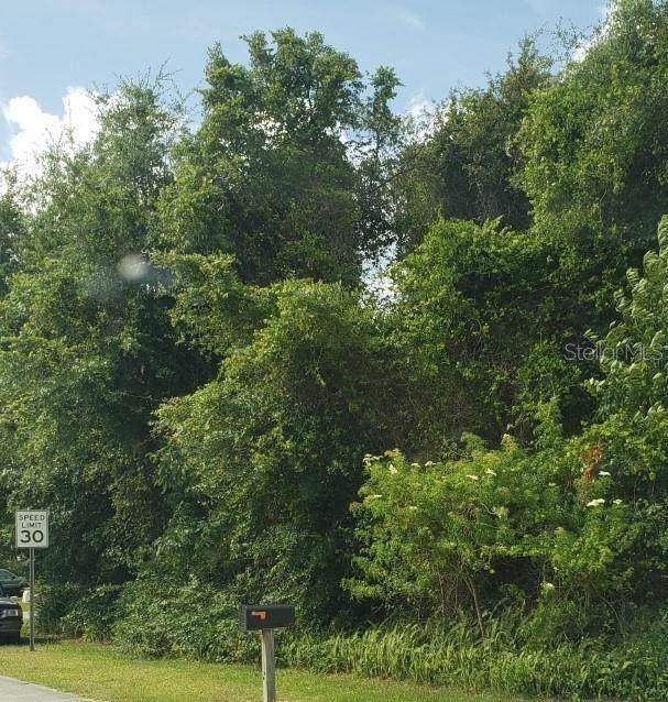 1162 Prescott Boulevard, Deltona, FL 32738 (MLS #V4913746) :: The Light Team