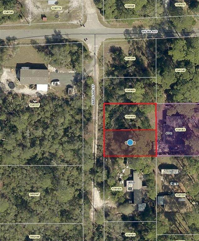 Maryland Street, Paisley, FL 32767 (MLS #V4913883) :: CGY Realty
