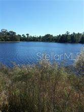 1225 Emmel Road, Lake Helen, FL 32744 (MLS #V4913991) :: Zarghami Group
