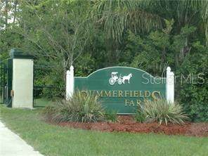 3420 Hickory Creek Road, Deltona, FL 32738 (MLS #V4914413) :: Lockhart & Walseth Team, Realtors