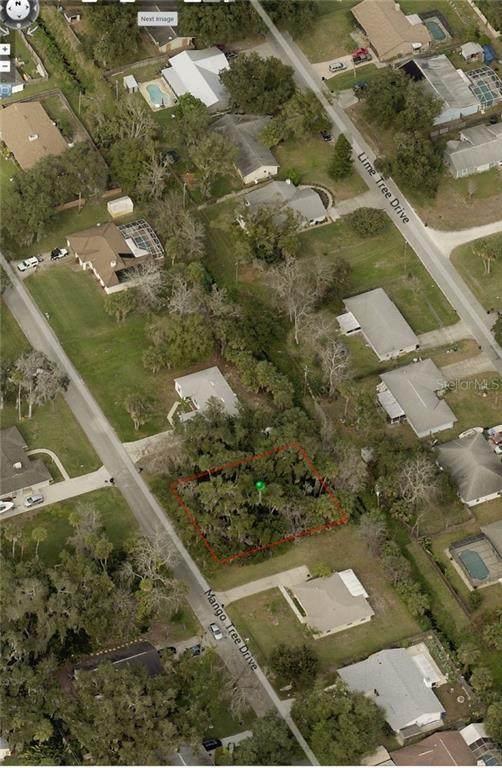 Mango Tree Drive, Edgewater, FL 32141 (MLS #V4914465) :: Dalton Wade Real Estate Group