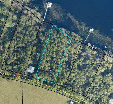 365 Lake Shore Drive, Pierson, FL 32180 (MLS #V4914599) :: Heckler Realty