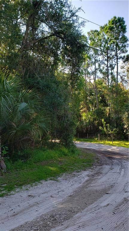 S Gaines Street, Oak Hill, FL 32759 (MLS #V4914946) :: Cartwright Realty