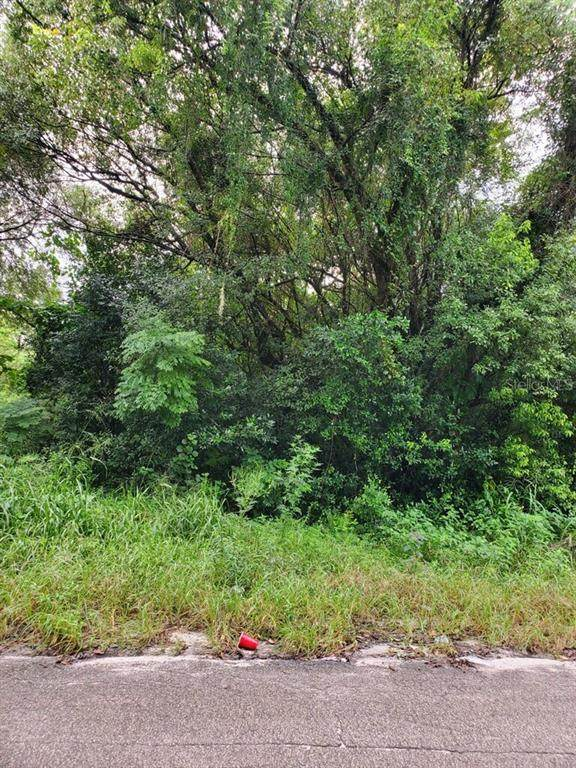 Green Street, Deland, FL 32720 (MLS #V4915505) :: Carmena and Associates Realty Group