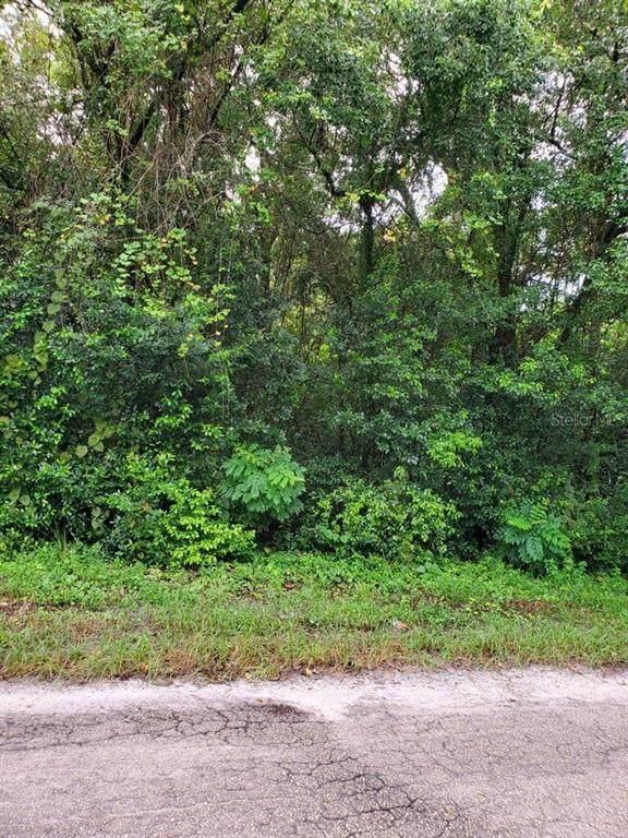 Green Street, Deland, FL 32720 (MLS #V4915506) :: Florida Life Real Estate Group