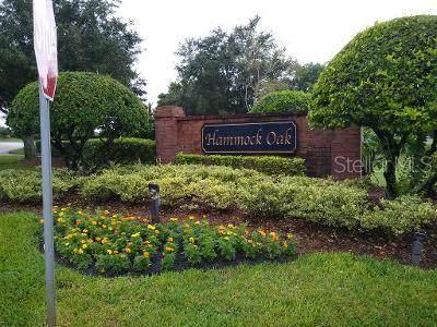 396 Hammock Oak Circle, Debary, FL 32713 (MLS #V4916049) :: Frankenstein Home Team
