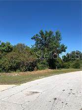 2938 Corrigan Drive, Deltona, FL 32738 (MLS #V4916921) :: Everlane Realty