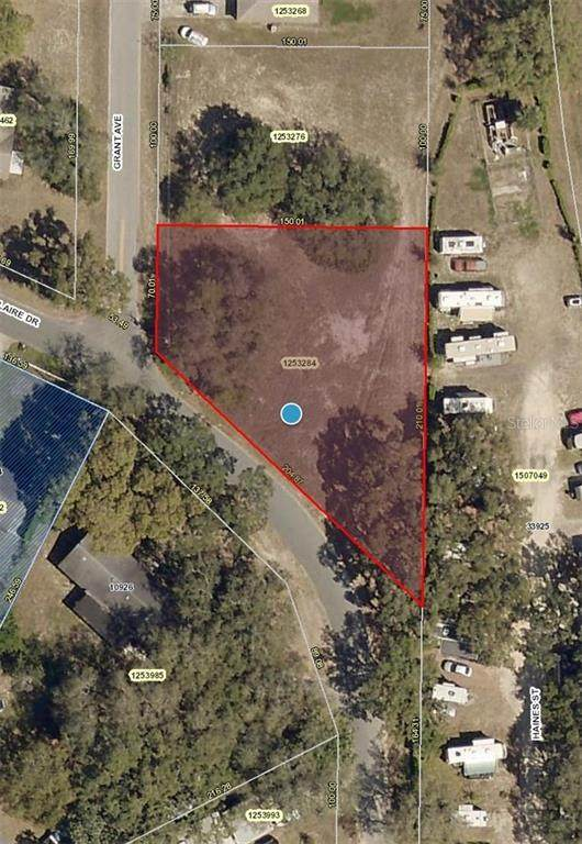 Claire Dr, Leesburg, FL 34788 (MLS #V4916970) :: Griffin Group