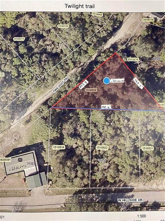 44710 Twilight Trail, Deland, FL 32720 (MLS #V4916985) :: Young Real Estate