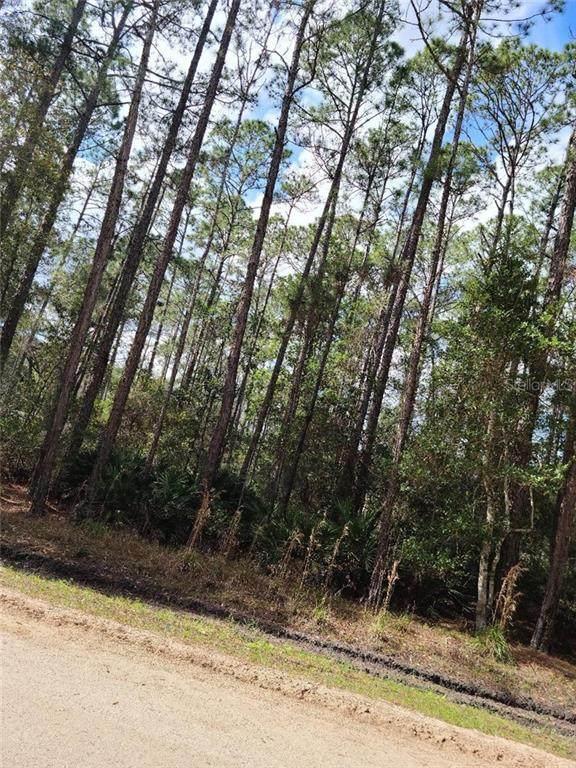 East Parkway, Deland, FL 32724 (MLS #V4917978) :: Delta Realty, Int'l.