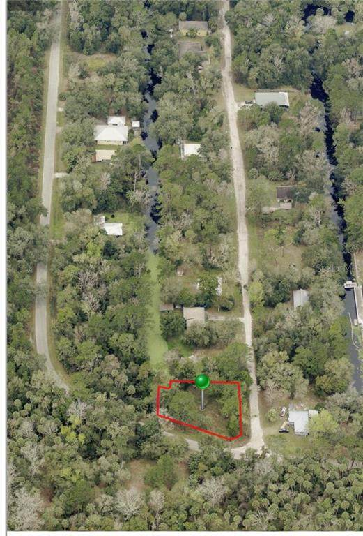 1602 Shell Harbor Road, Pierson, FL 32180 (MLS #V4918632) :: The Hustle and Heart Group