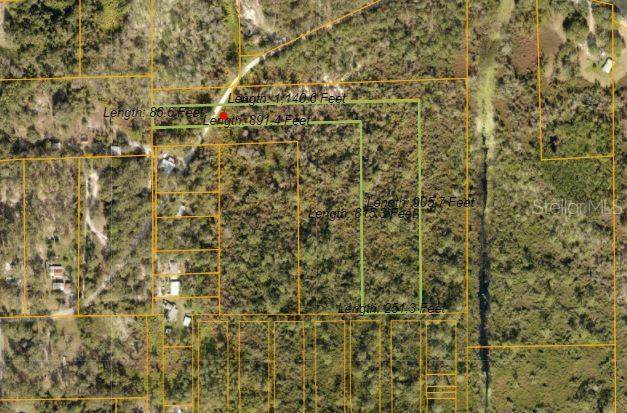 Raulerson Road, Seville, FL 32190 (MLS #V4919044) :: New Home Partners