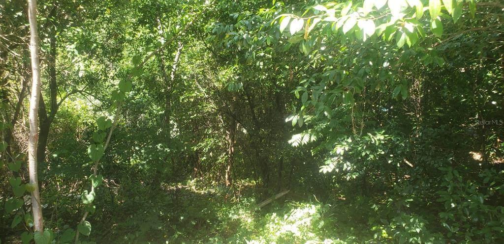 1622 Merrick Drive - Photo 1