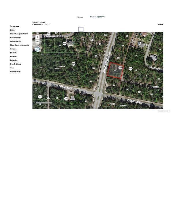 8285 N Citrus Springs Boulevard, Citrus Springs, FL 34433 (MLS #V4919334) :: Zarghami Group