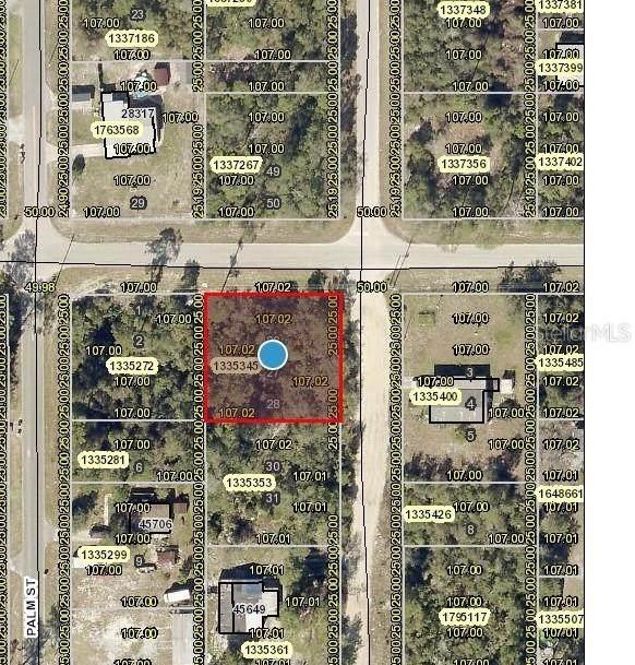 Palmetto Street, Paisley, FL 32767 (MLS #V4919628) :: Zarghami Group