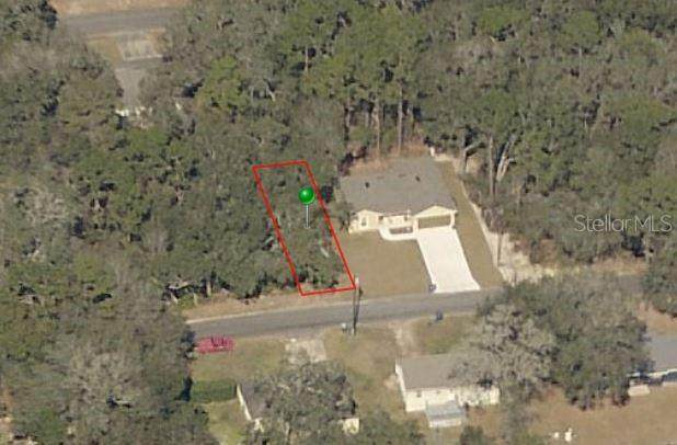 19TH Street, Orange City, FL 32763 (MLS #V4920503) :: Premium Properties Real Estate Services