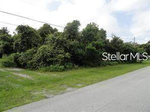 9TH Avenue, Deland, FL 32724 (MLS #V4921391) :: Everlane Realty