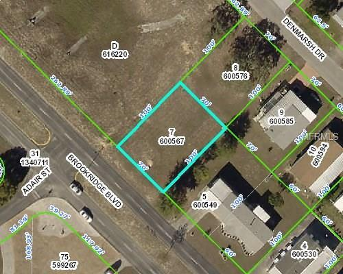 15822 Brookridge Boulevard, Brooksville, FL 34613 (MLS #W7636634) :: Premium Properties Real Estate Services