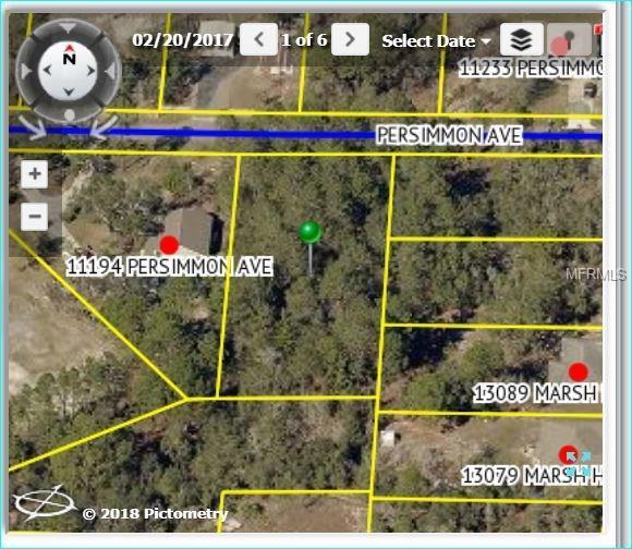 Persimmon Avenue, Weeki Wachee, FL 34614 (MLS #W7637209) :: Zarghami Group