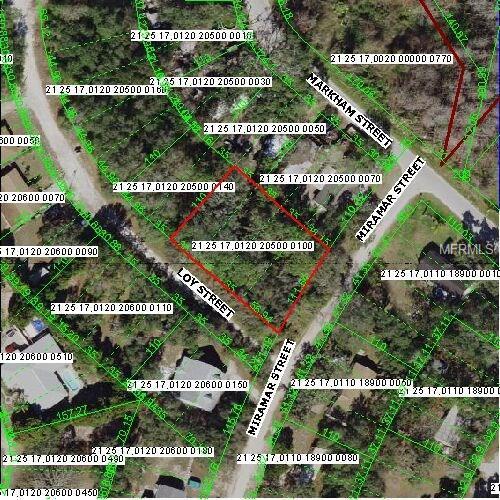 9917 Miramar Street, New Port Richey, FL 34654 (MLS #W7638604) :: Griffin Group