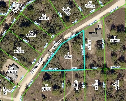13030 Hornbill Road, Weeki Wachee, FL 34614 (MLS #W7638766) :: Griffin Group