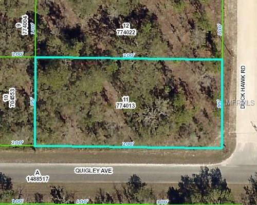 13327 Quigley Avenue, Weeki Wachee, FL 34614 (MLS #W7638938) :: Godwin Realty Group