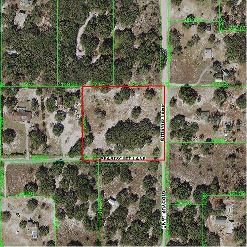 Sea Biscut, Hudson, FL 34669 (MLS #W7638979) :: Premium Properties Real Estate Services