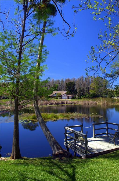 1053 Lake Como Drive, Lutz, FL 33558 (MLS #W7639063) :: Delgado Home Team at Keller Williams