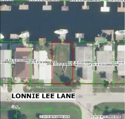 6401 Lonnie Lee Lane, Hudson, FL 34667 (MLS #W7800008) :: Griffin Group
