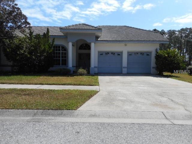 9328 Woodstone Lane, Hudson, FL 34667 (MLS #W7800051) :: Griffin Group