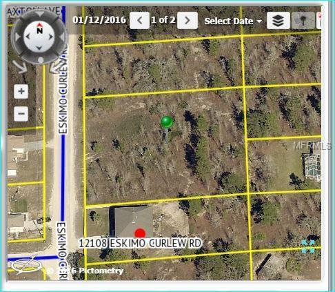 12128 Eskimo Curlew Road #4, Brooksville, FL 34614 (MLS #W7800116) :: G World Properties