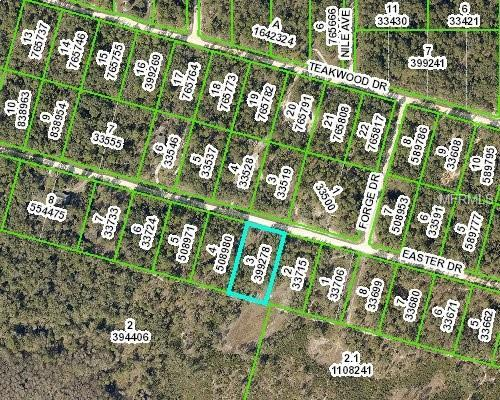 0 Easter Drive, Webster, FL 33597 (MLS #W7800374) :: KELLER WILLIAMS CLASSIC VI