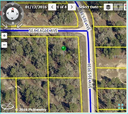 0 Sea Eagle Avenue, Brooksville, FL 34613 (MLS #W7800394) :: RE/MAX Realtec Group