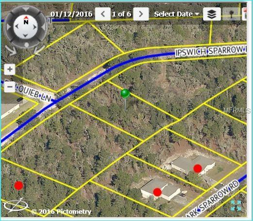 12070 Ipswich Sparrow Road, Weeki Wachee, FL 34614 (MLS #W7800487) :: KELLER WILLIAMS CLASSIC VI