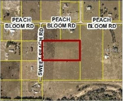 11150 Sweet Peach Road, Brooksville, FL 34614 (MLS #W7801052) :: The Duncan Duo Team