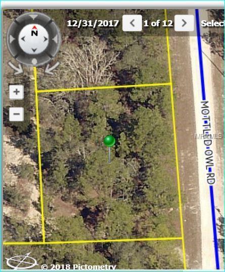 15281 Mottled Owl Road, Weeki Wachee, FL 34614 (MLS #W7801079) :: The Duncan Duo Team