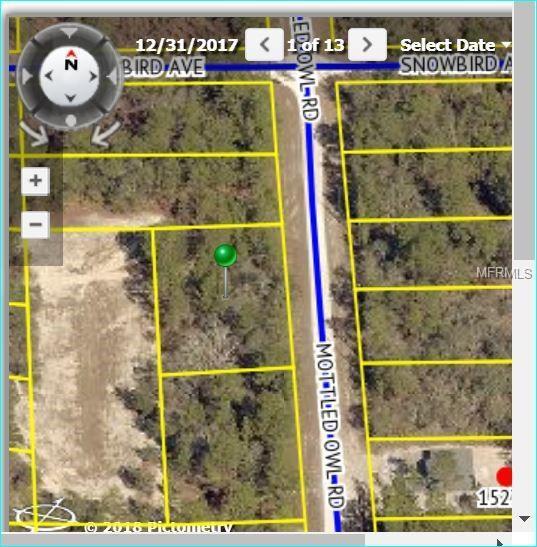 15301 Mottled Owl Road, Weeki Wachee, FL 34614 (MLS #W7801117) :: The Duncan Duo Team