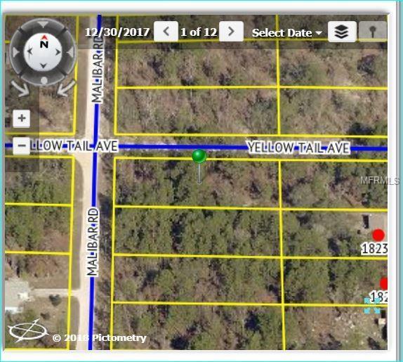 11308 Yellow Tail Avenue, Weeki Wachee, FL 34614 (MLS #W7801118) :: The Duncan Duo Team