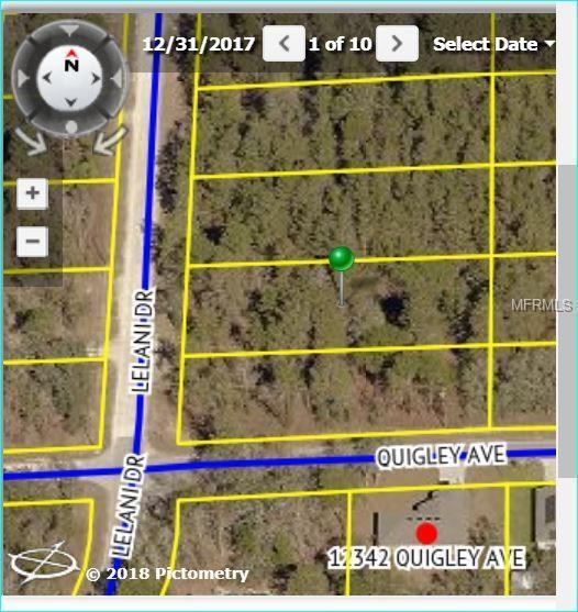 14480 Lelani Drive, Weeki Wachee, FL 34614 (MLS #W7801375) :: The Duncan Duo Team