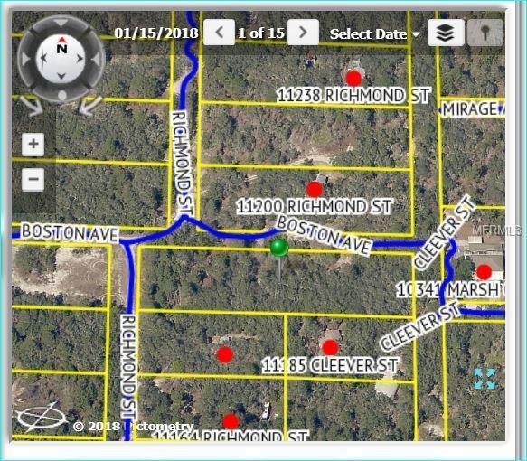 11406 Boston Avenue, Weeki Wachee, FL 34614 (MLS #W7801452) :: G World Properties