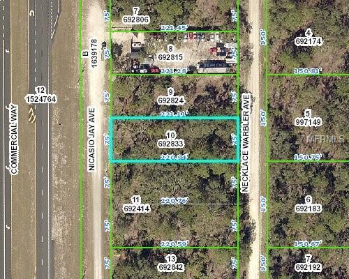 00 Necklace Warbler Avenue, Weeki Wachee, FL 34614 (MLS #W7802066) :: The Price Group