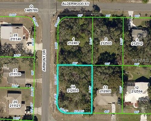 6209 Radford Street, Spring Hill, FL 34606 (MLS #W7802167) :: The Lockhart Team