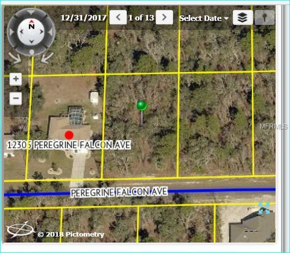 12315 Peregrine Falcon Avenue, Weeki Wachee, FL 34614 (MLS #W7802323) :: Team Pepka