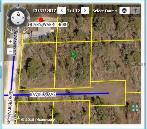 13415 Ravilla Avenue, Weeki Wachee, FL 34614 (MLS #W7802324) :: FL 360 Realty