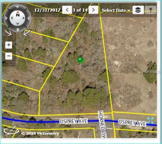 12395 Osprey Avenue, Weeki Wachee, FL 34614 (MLS #W7802327) :: FL 360 Realty
