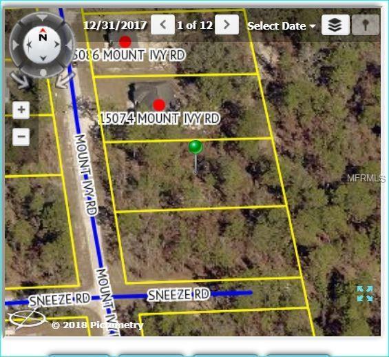 15062 Mount Ivy Road, Weeki Wachee, FL 34614 (MLS #W7802328) :: The Lockhart Team