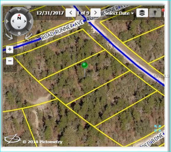 14281 Ermine Owl Road, Weeki Wachee, FL 34614 (MLS #W7802331) :: FL 360 Realty